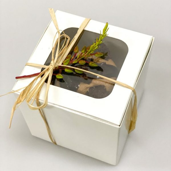 Giftboxed Cupcake (1)